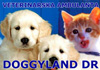 Veterinarska ordinacija doggyland dr