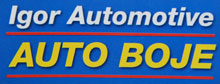 Auto boje Igor Automotive logo