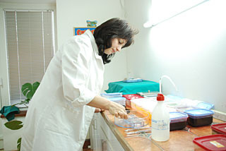 Patohistološka laboratorija Dr Radosavljević - ANALIZE - 1